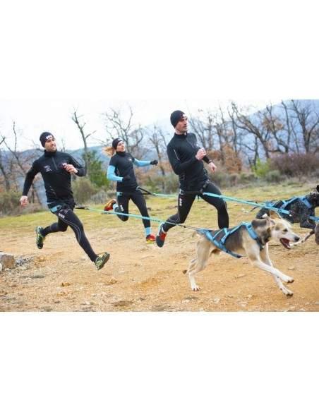 BAUDRIER CANYON I-DOG